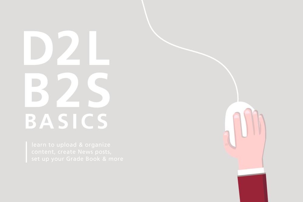 D2L Basics